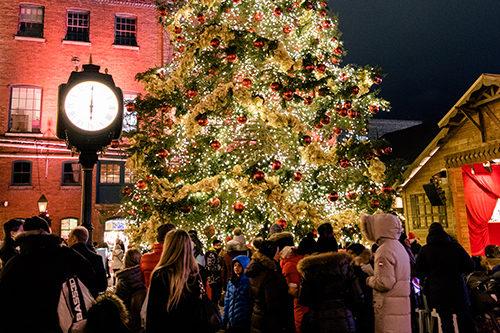 Massive Christmas Tree