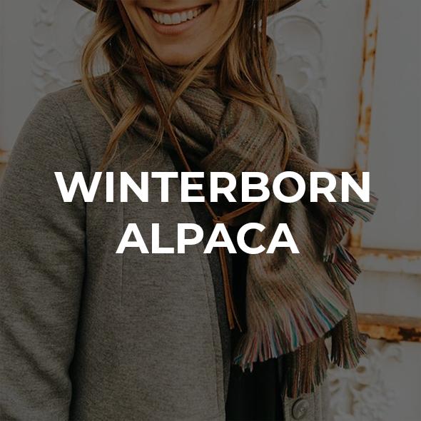 Winterborn Alpaca Vendor Image